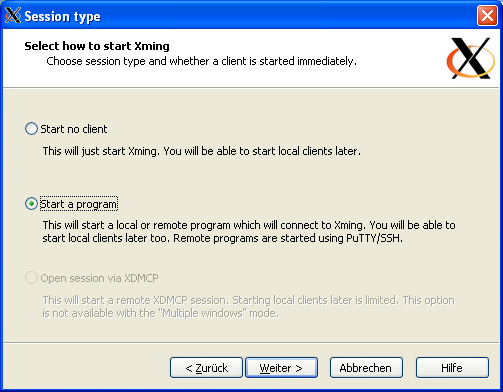 Screenshot: XLaunch Session Type